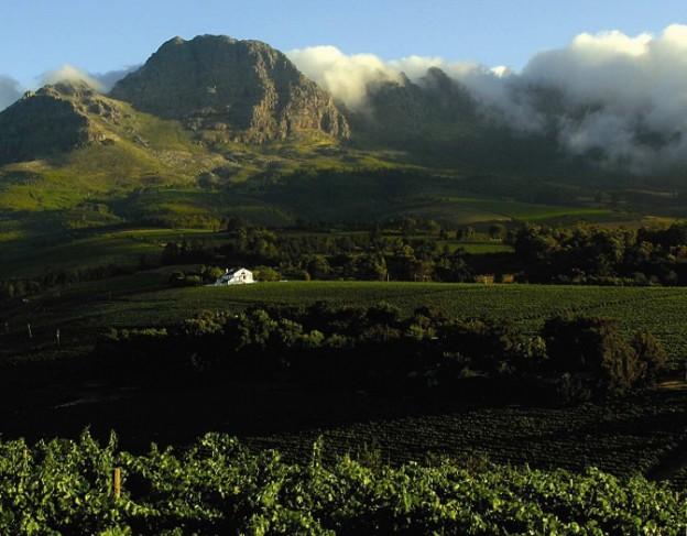 Stellenbosch - full res - Majeka house
